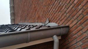 bouwkundige keuring amstelveen